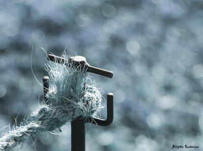 Photomania - Blue Knot