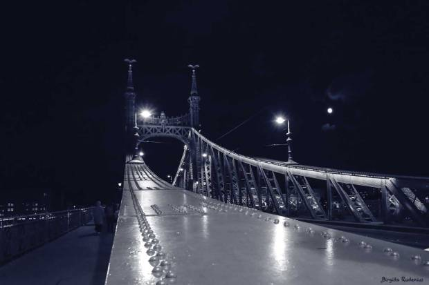 Blue Photo - Liberty Bridge