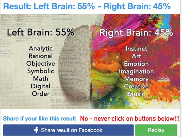 Test Brain - Result