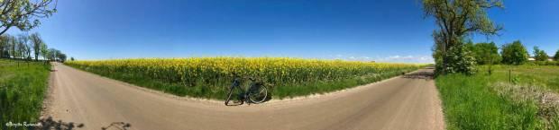 Biking in Skåne, Sweden.