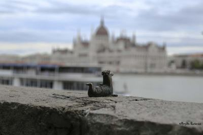 Art Dragon by Danube River, Budapest. Parliament in the background.