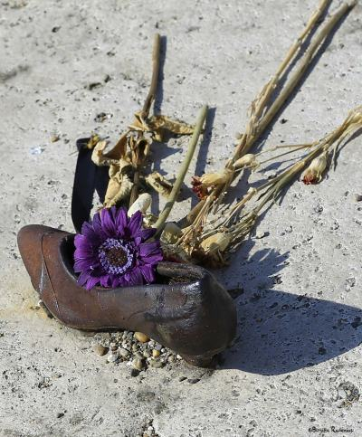 Memorial shoe Danube with flower.