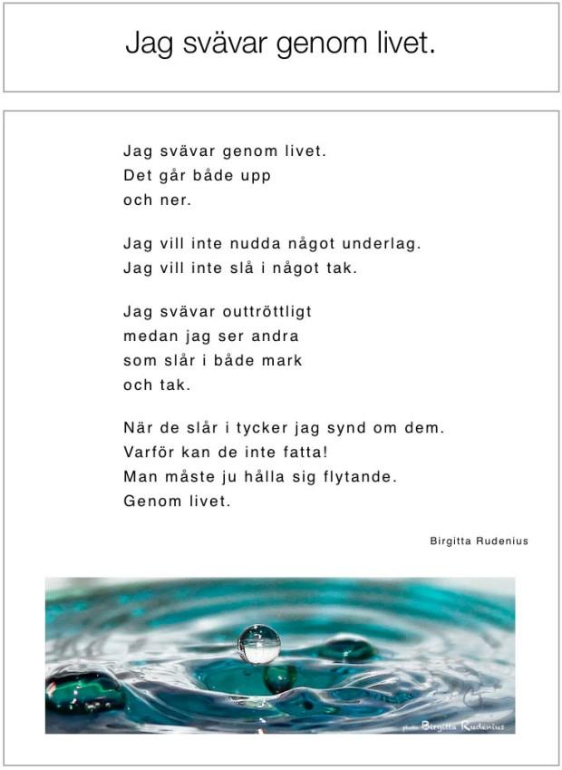 Jag svävar genom livet © Birgitta Rudenius