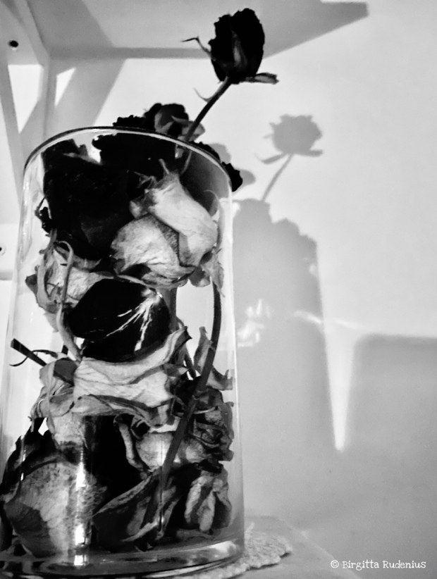 Black and white Photo © Birgitta Rudenius