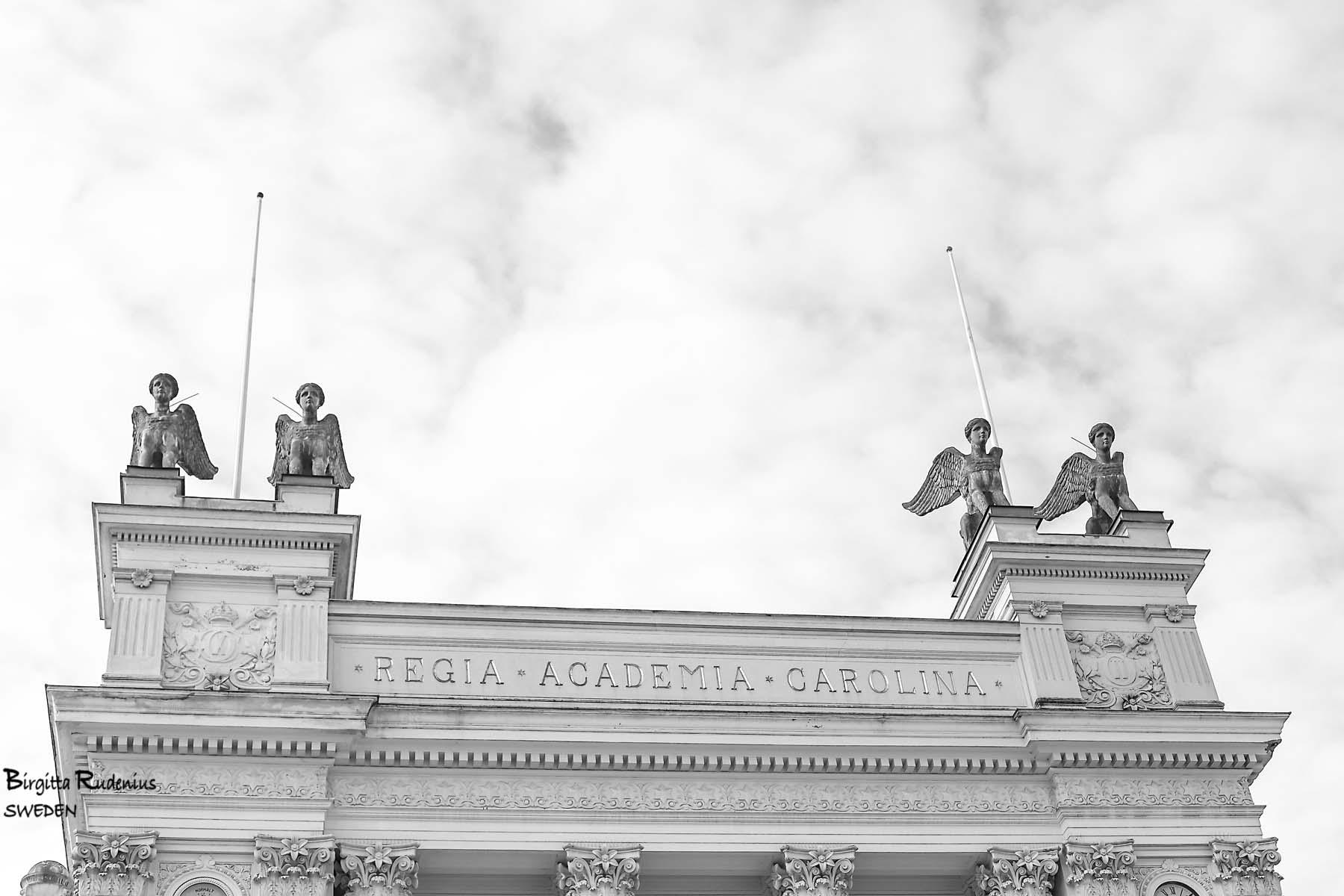 Lunds University © Birgitta Rudenius